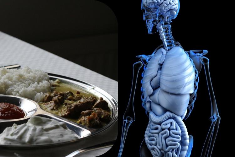 Dhatu - impact de nourriture sur notre corps