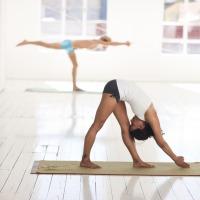 Les différentes voies du yoga